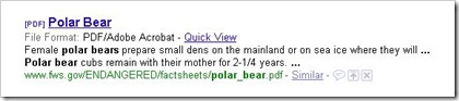 Polar_Bear_PDF_1
