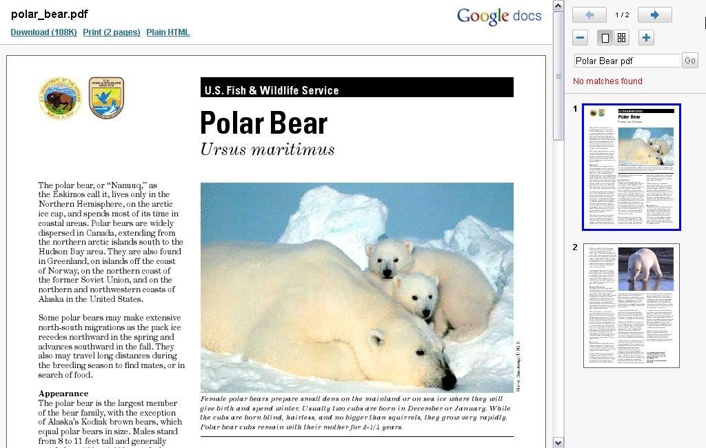 Polar_Bear_PDF_2