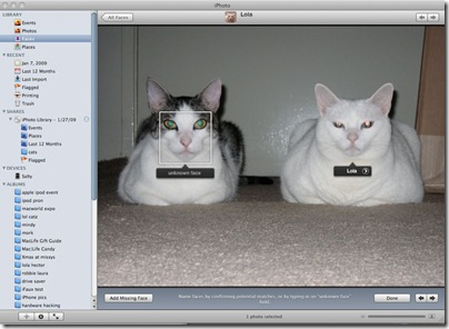 iPhoto_cat
