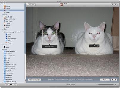 iPhoto_cat